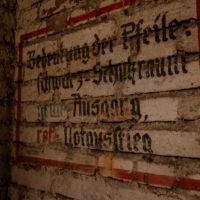Panierskeller_Nürnberg