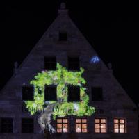 Fürther Glanzlichter 2019 Grüner Baum